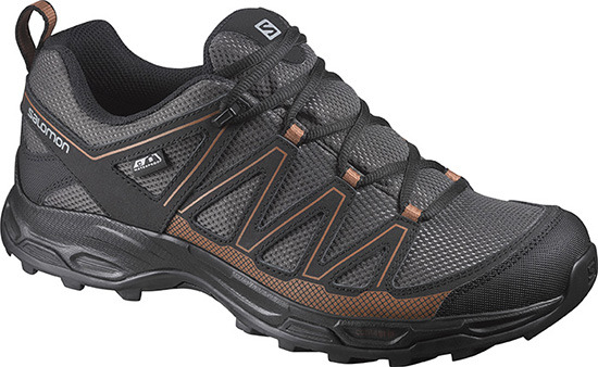 mens salomon hiking shoe